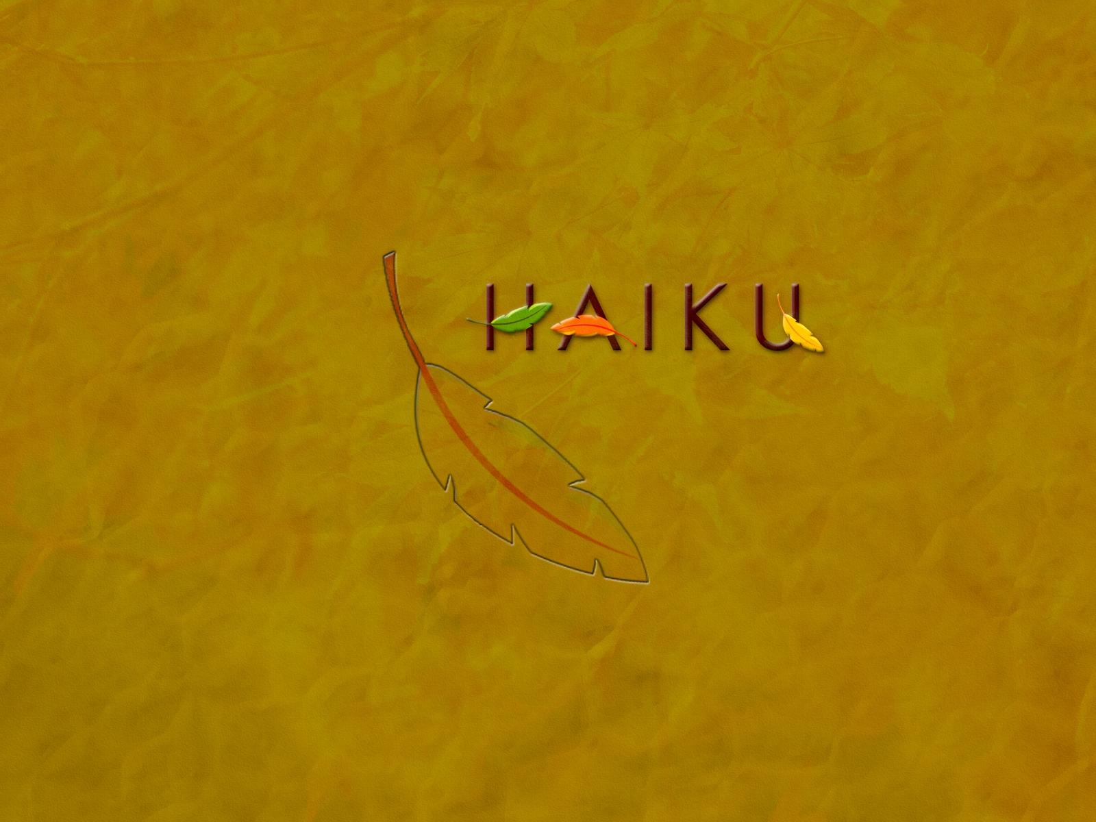 Haiku 1600x1200